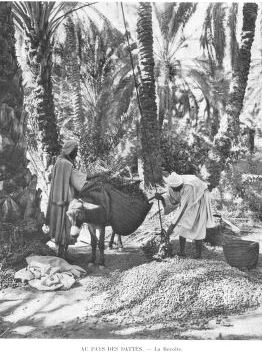 Algérie Illustrée-1923-03-Le Pays des dattes- et Etienne Dinet