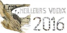 Capture-Meilleurs-Voeux-2016-der-de-der