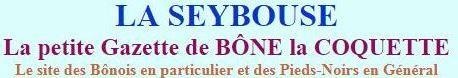 Image la seybouse