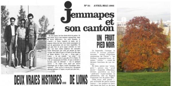 UneàlaUne-Jemmapes 31-der droit
